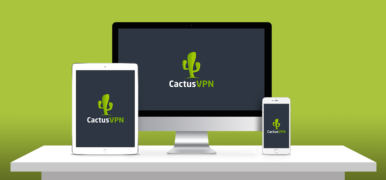 cactus vpn review